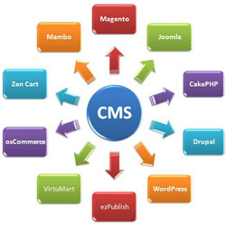 professional Content Management System